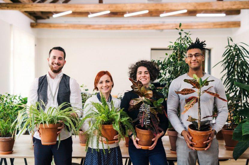 groupe de gens avec plantes